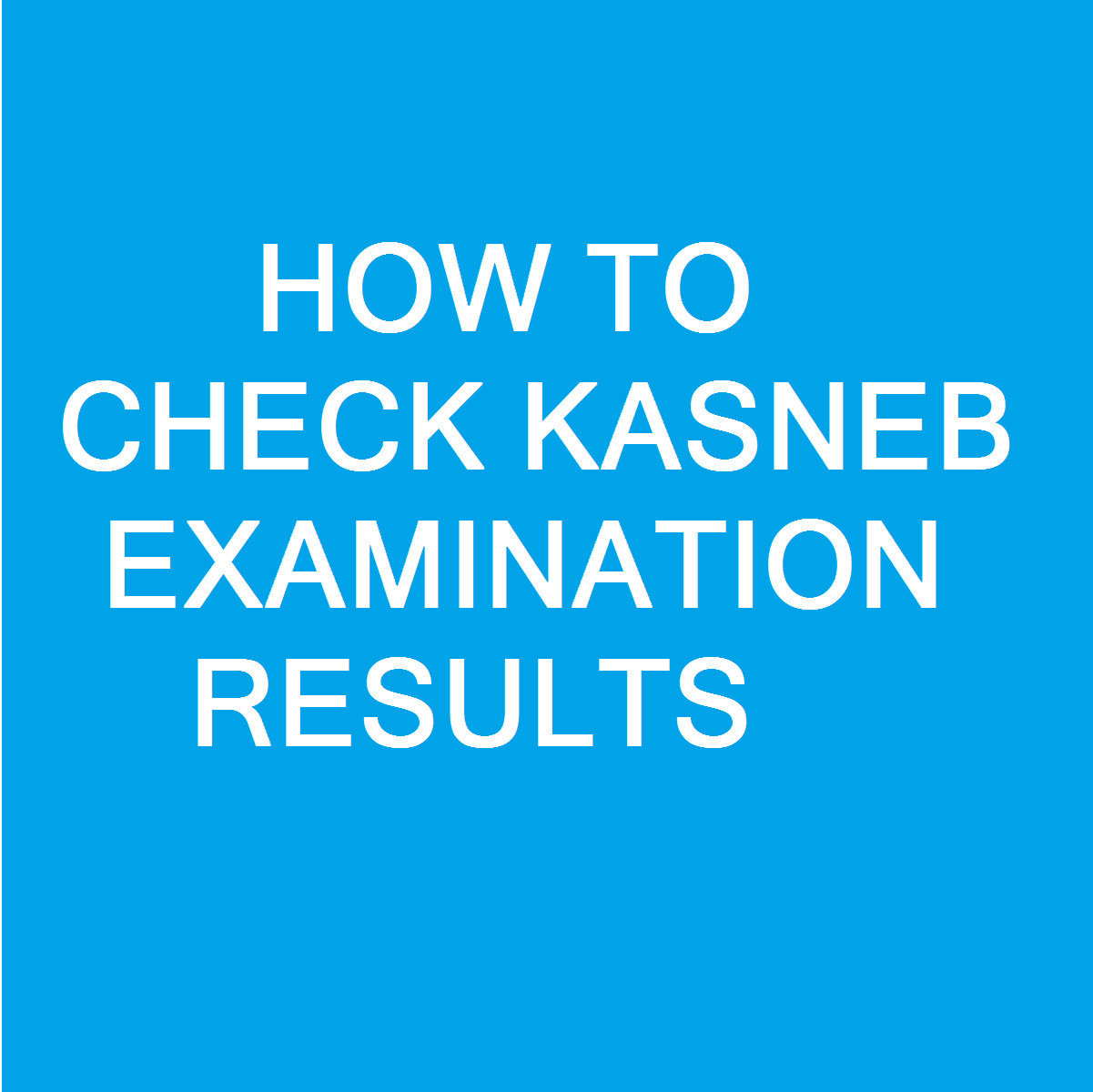 KASNEB Examination Results