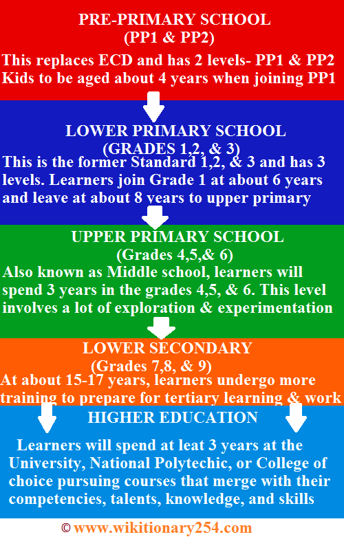 What is competency based curriculum